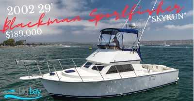 View 2002 Blackman 'SKYKUN' - 29 Sportfisher - Listing #302741