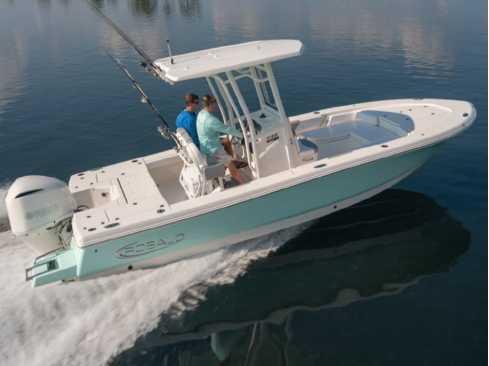 View 2022 Robalo 246 Cayman - Listing #318100